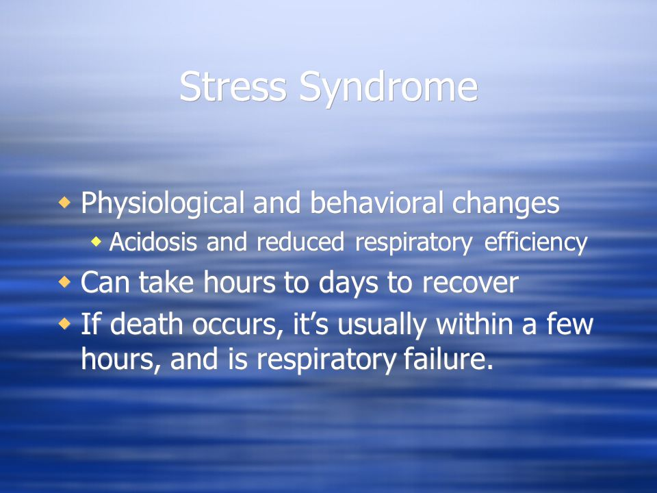Stress Syndrome Physiological and behavioral changes