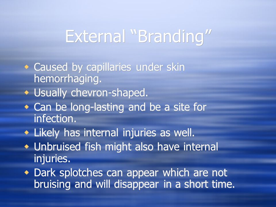 External Branding Caused by capillaries under skin hemorrhaging.