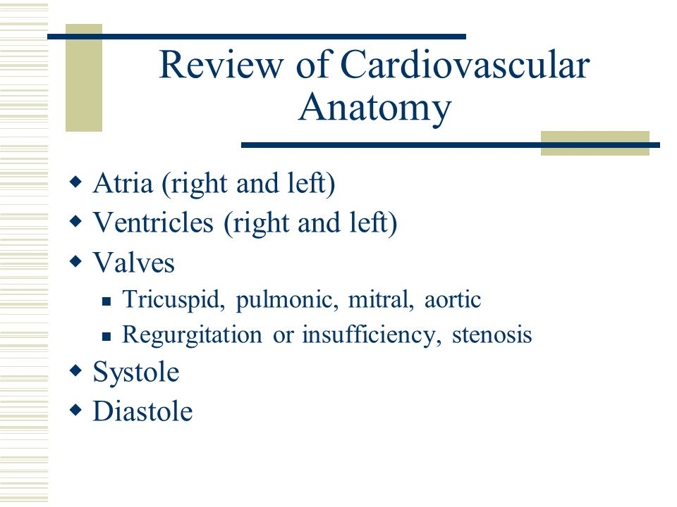 Review of Cardiovascular Anatomy