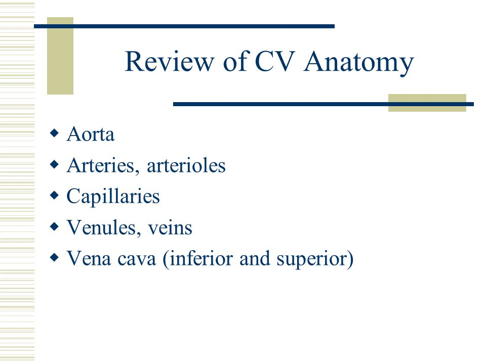Review of CV Anatomy Aorta Arteries, arterioles Capillaries