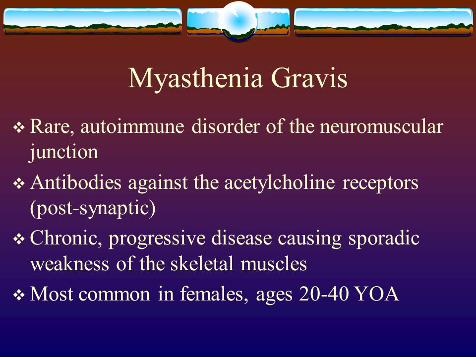 Myasthenia Gravis Rare, autoimmune disorder of the neuromuscular junction. Antibodies against the acetylcholine receptors (post-synaptic)