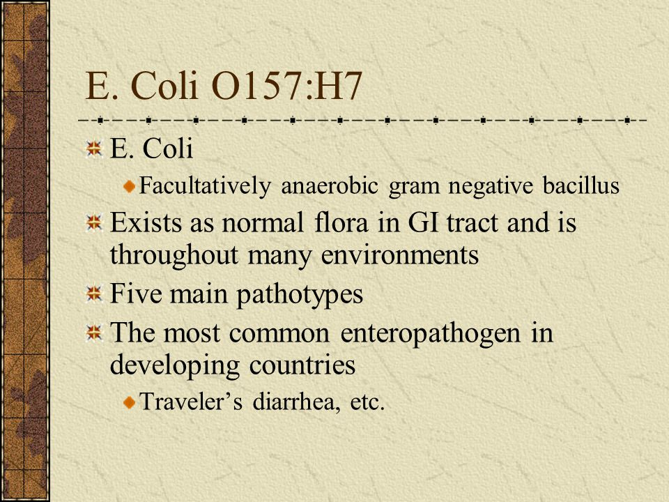 E. Coli O157:H7 E. Coli. Facultatively anaerobic gram negative bacillus. Exists as normal flora in GI tract and is throughout many environments.