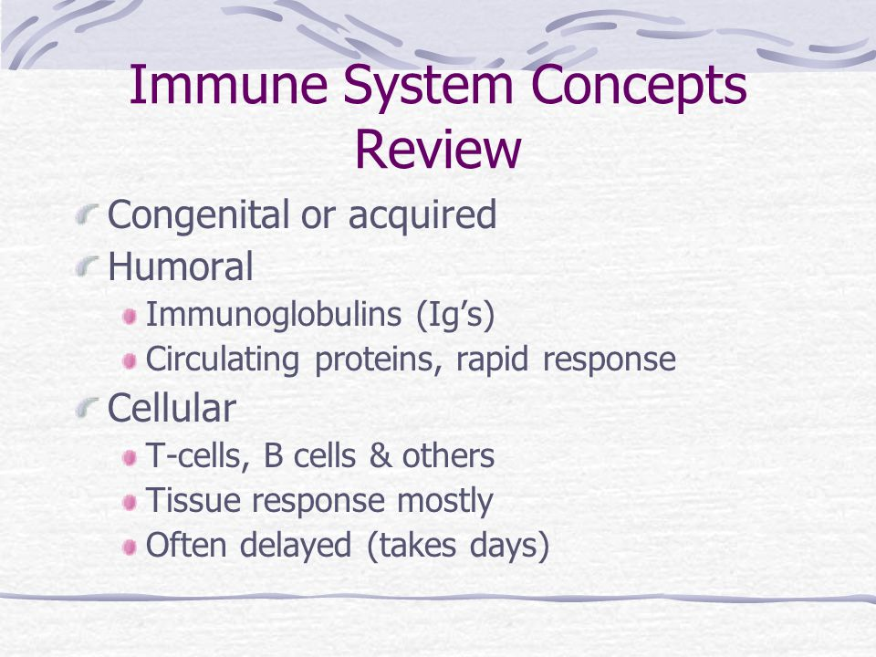 Immune System Concepts Review