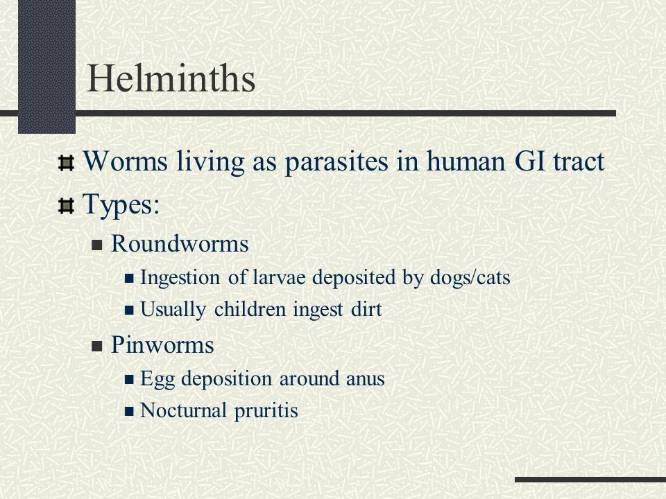 Helminths Worms living as parasites in human GI tract Types: