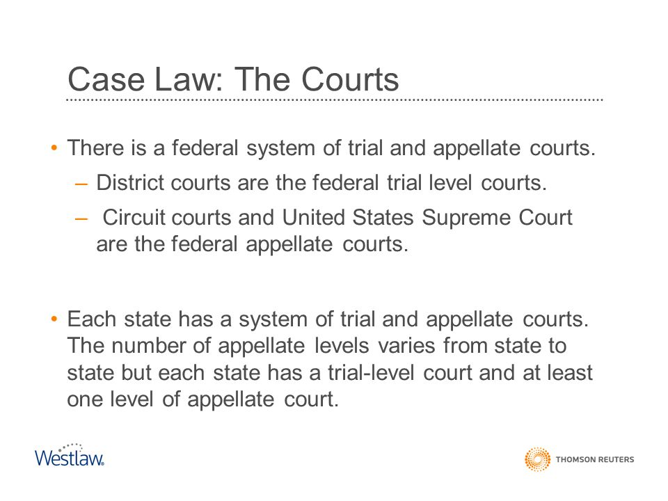 Case Law: The Courts There is a federal system of trial and appellate courts. District courts are the federal trial level courts.