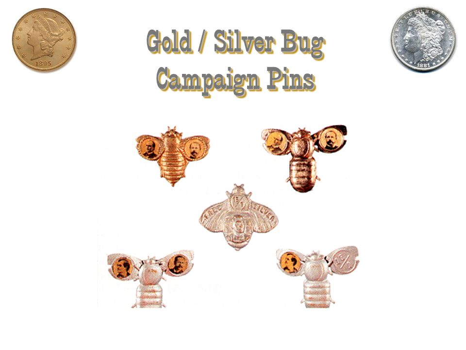 Gold / Silver Bug Campaign Pins