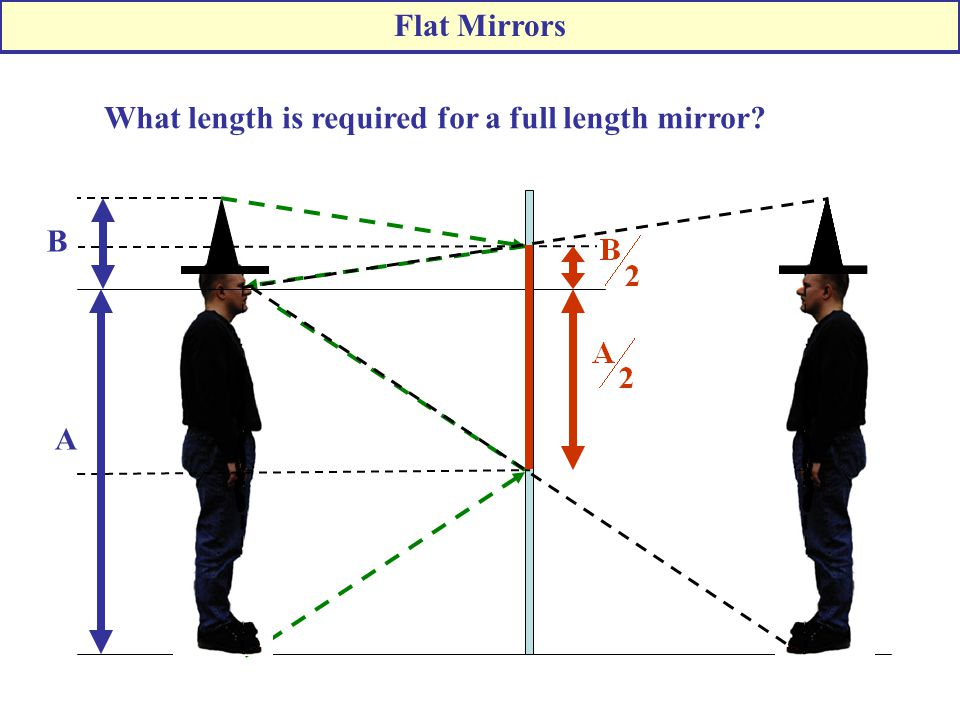 Flat Mirrors What length is required for a full length mirror A B