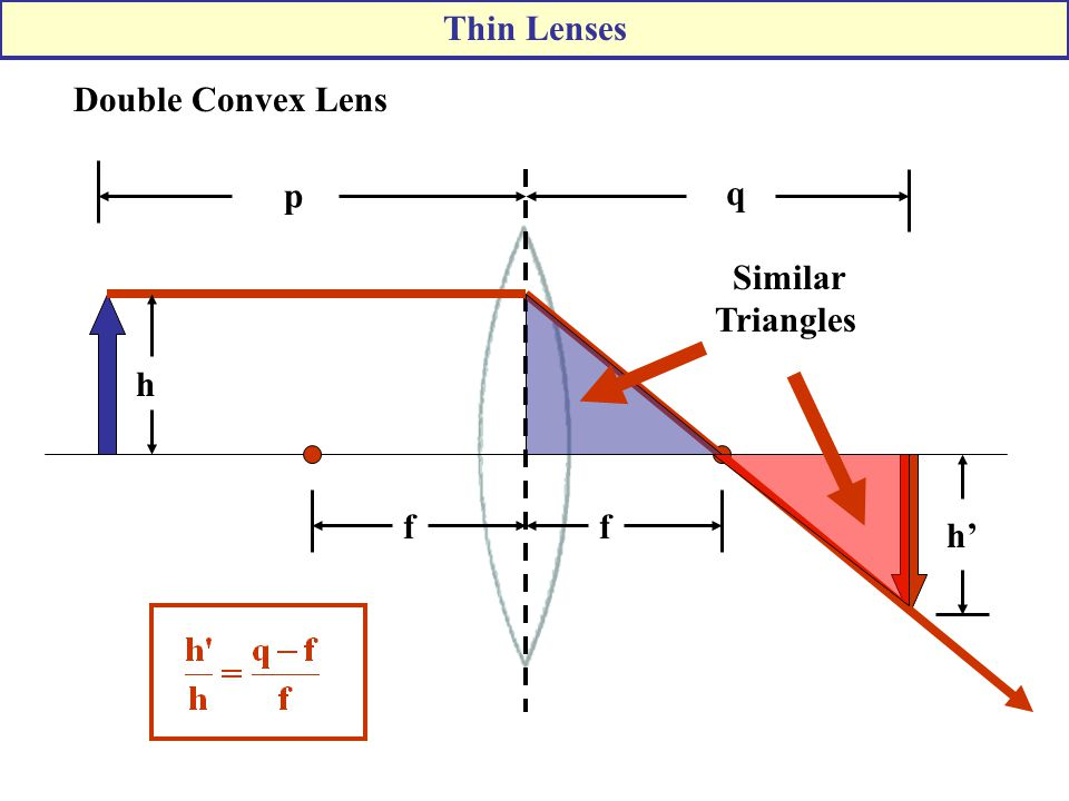 Thin Lenses Double Convex Lens f p q h' Similar Triangles h