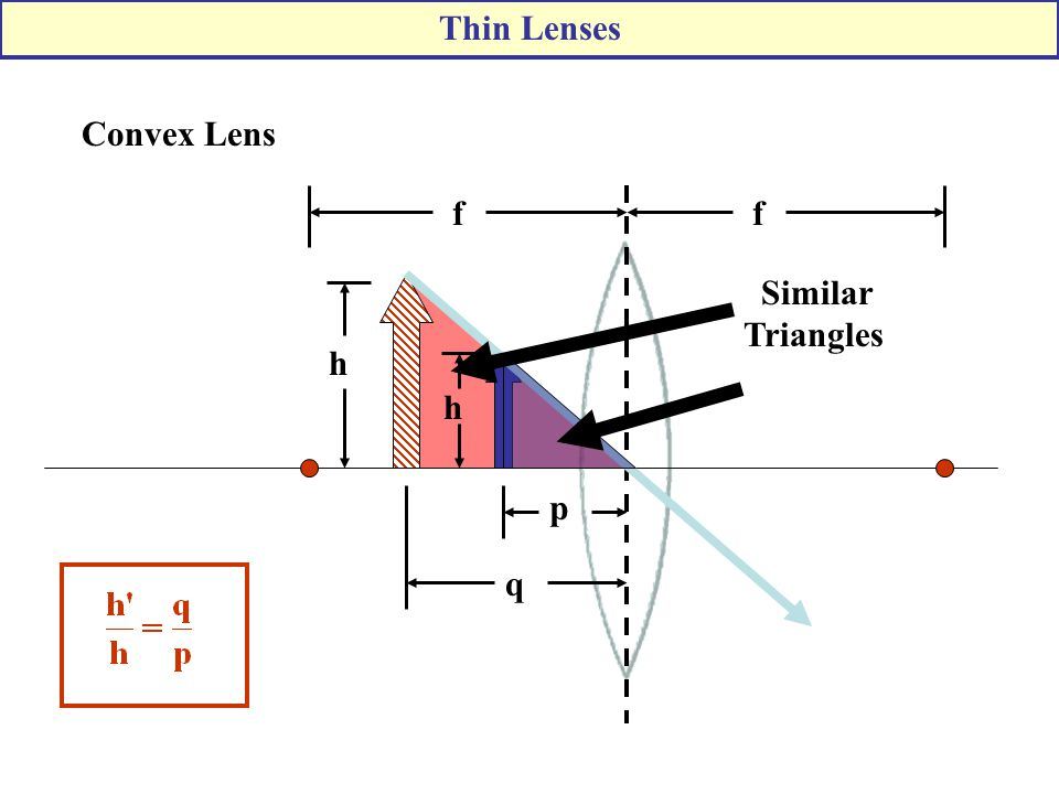 Thin Lenses Convex Lens f f Similar Triangles h h p q