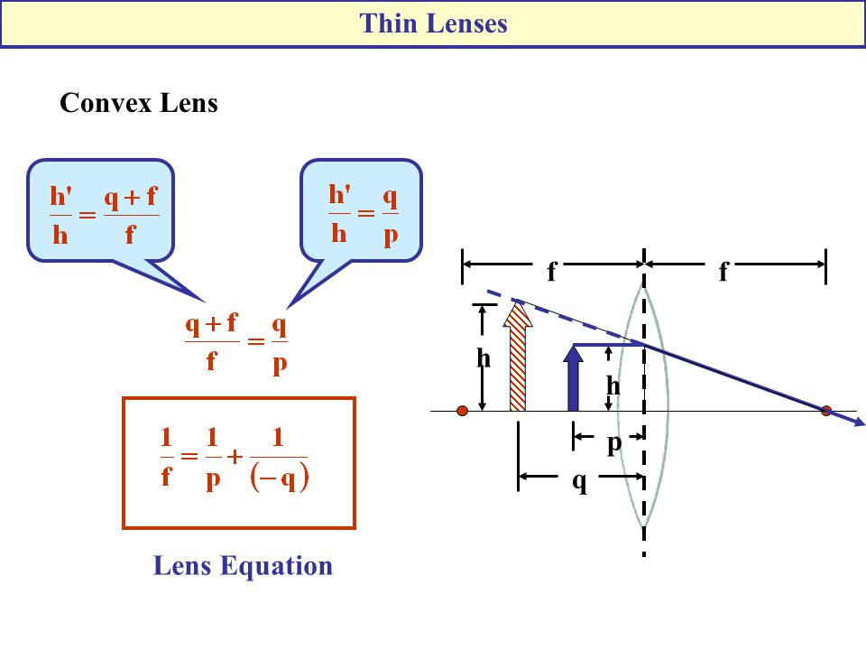 Thin Lenses Convex Lens f q h p Lens Equation