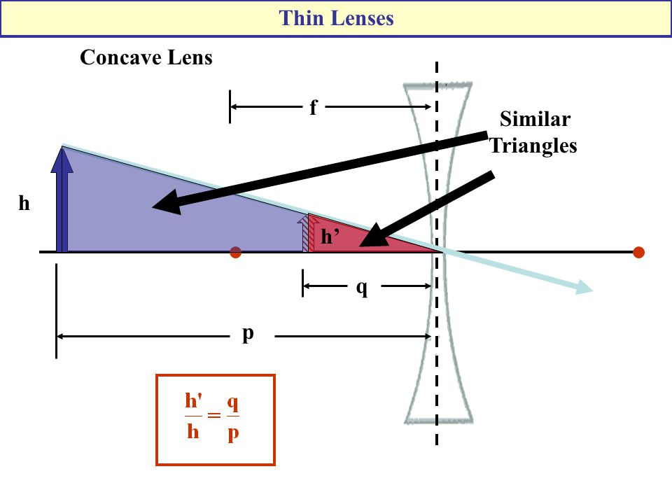 Thin Lenses Concave Lens h h' p f q Similar Triangles