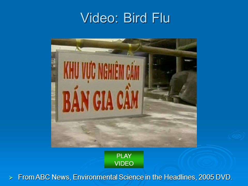 Video: Bird Flu PLAY VIDEO From ABC News, Environmental Science in the Headlines, 2005 DVD.