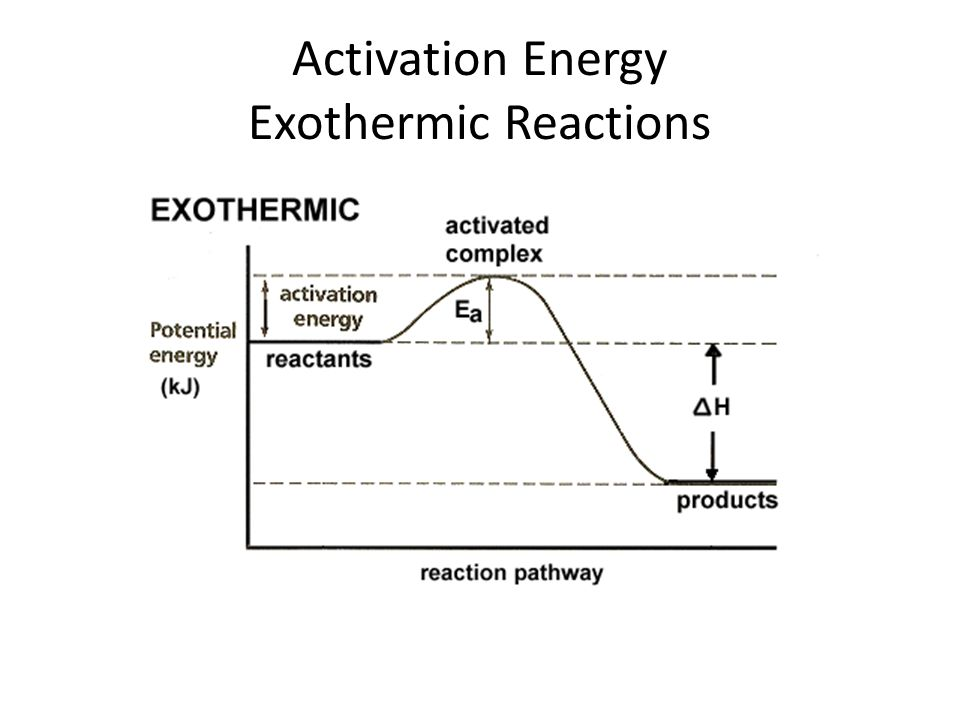 Activation Energy Exothermic Reactions