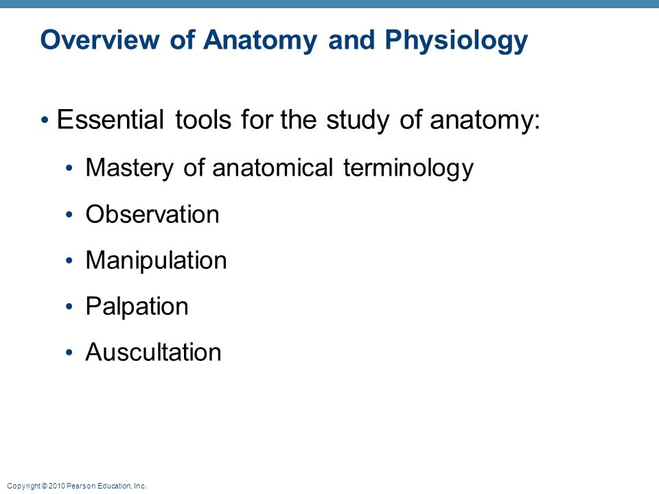 Overview of Anatomy and Physiology