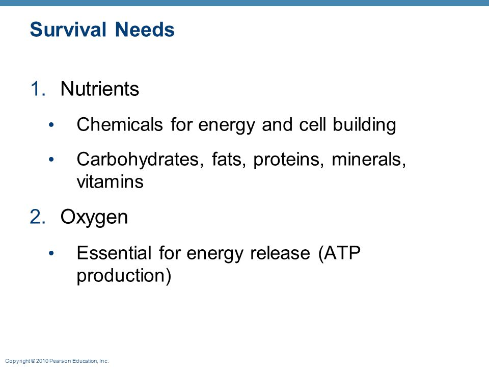 Survival Needs Nutrients Oxygen Chemicals for energy and cell building