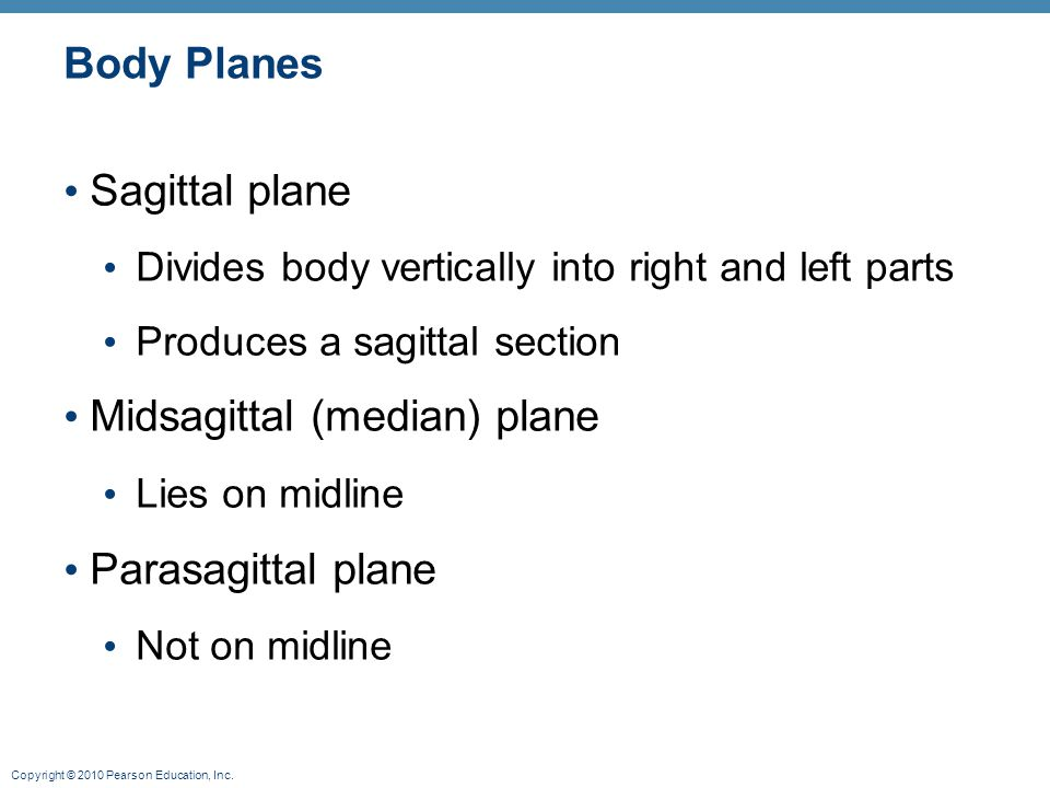 Midsagittal (median) plane
