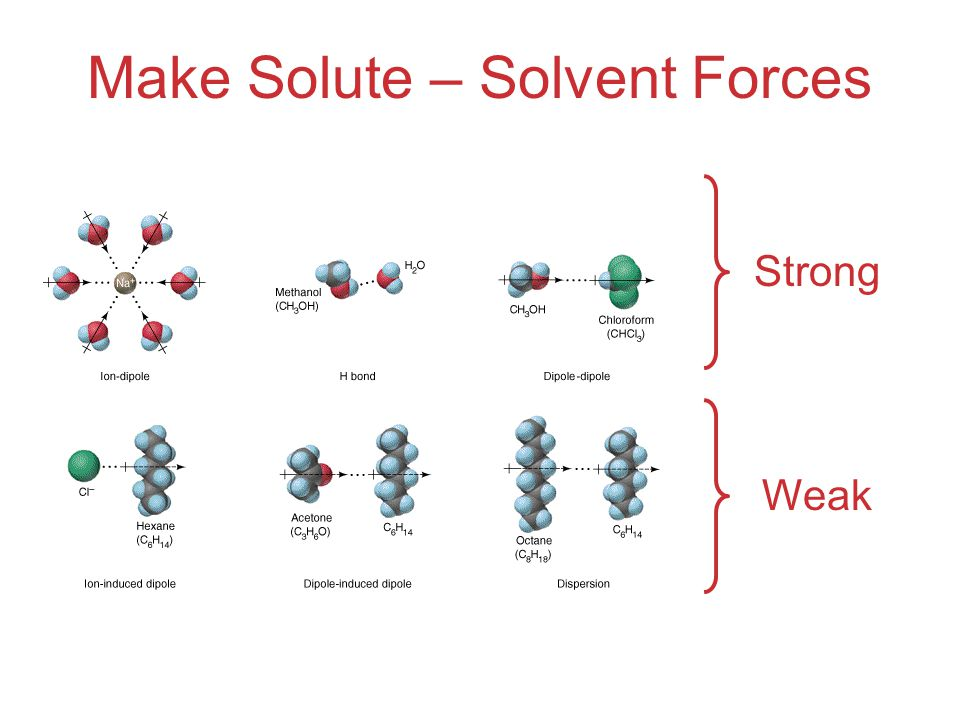 Make Solute – Solvent Forces