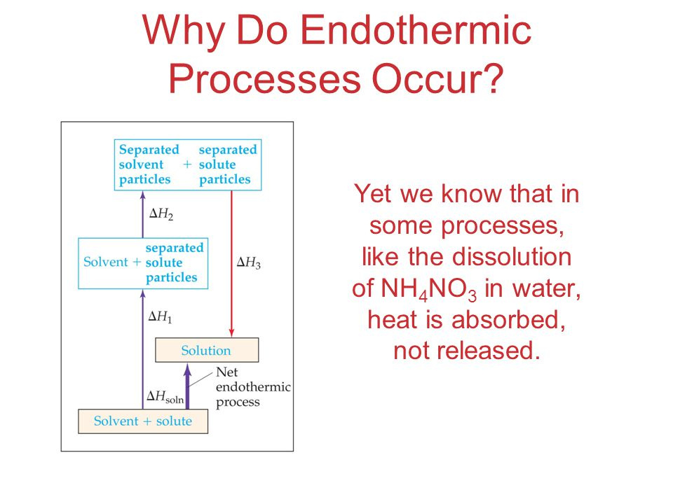 Why Do Endothermic Processes Occur