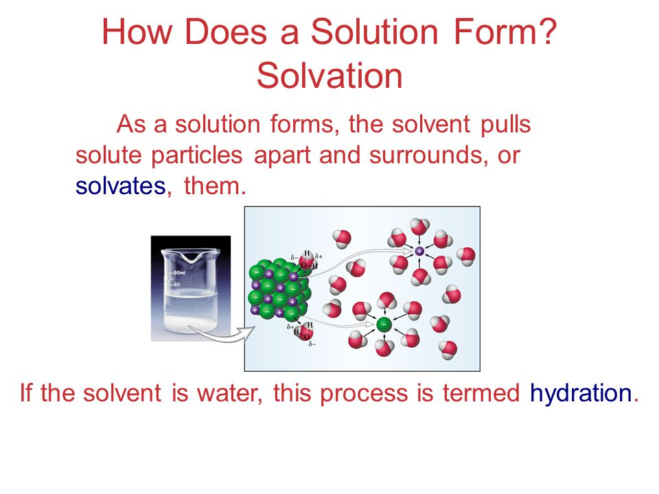 How Does a Solution Form Solvation