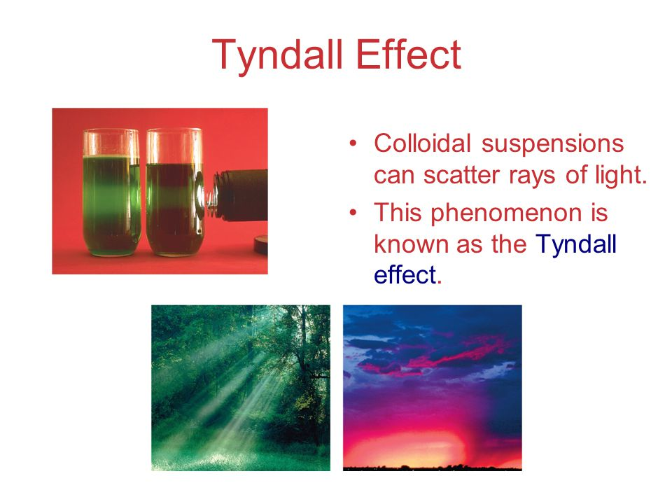 Tyndall Effect Colloidal suspensions can scatter rays of light.
