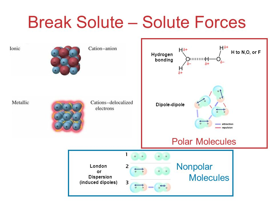 Break Solute – Solute Forces
