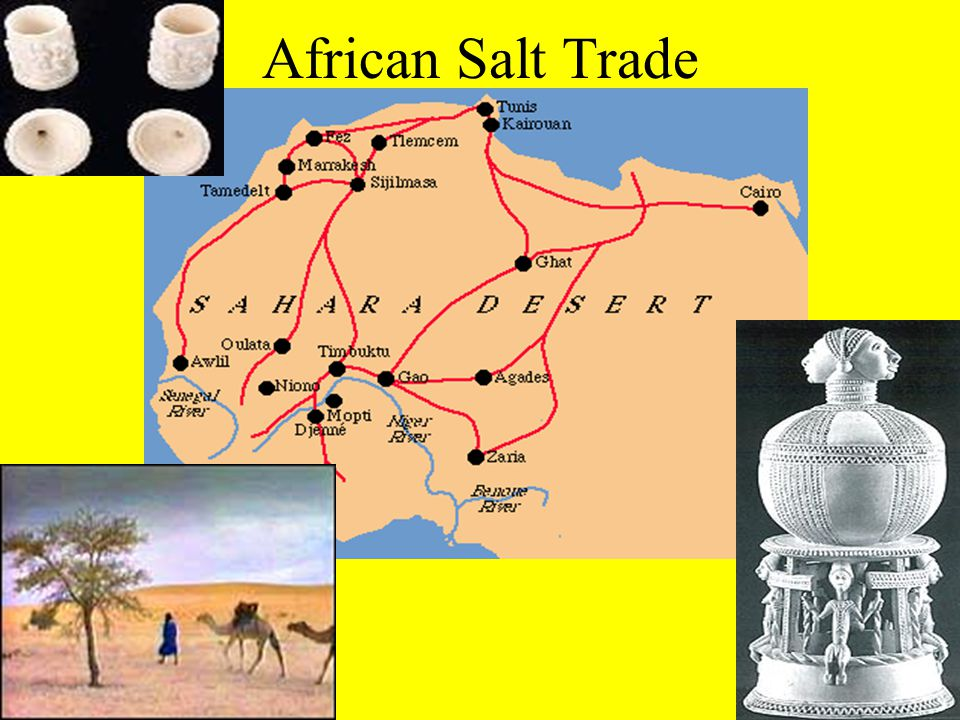 African Salt Trade