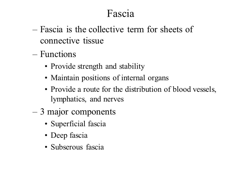 Fascia Fascia is the collective term for sheets of connective tissue