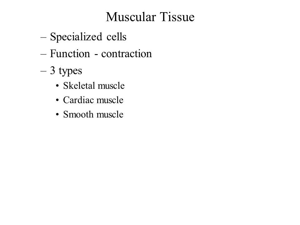 Muscular Tissue Specialized cells Function - contraction 3 types