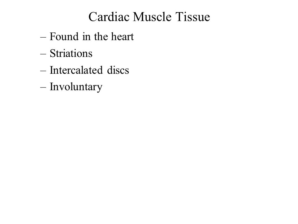 Cardiac Muscle Tissue Found in the heart Striations Intercalated discs