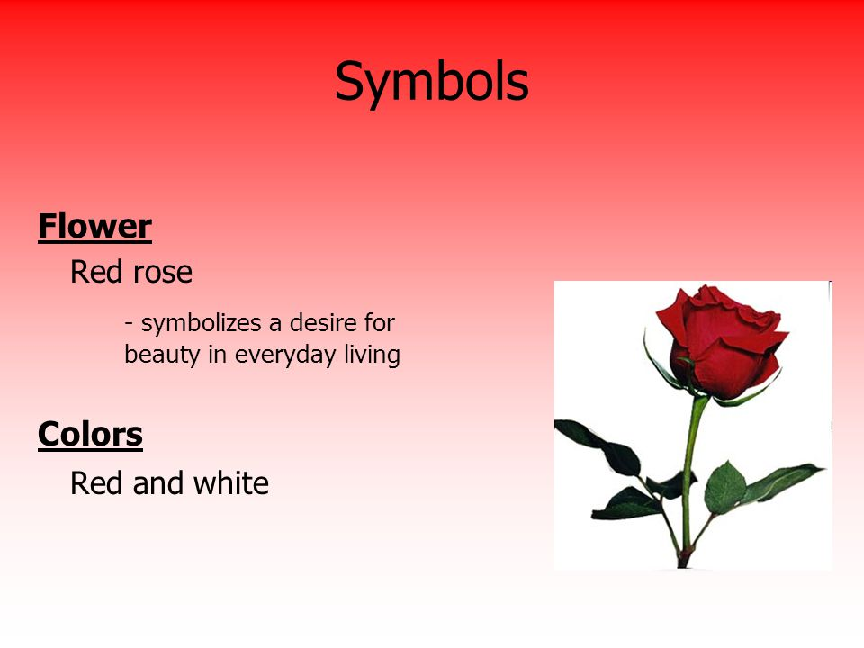 Symbols Flower - symbolizes a desire for beauty in everyday living