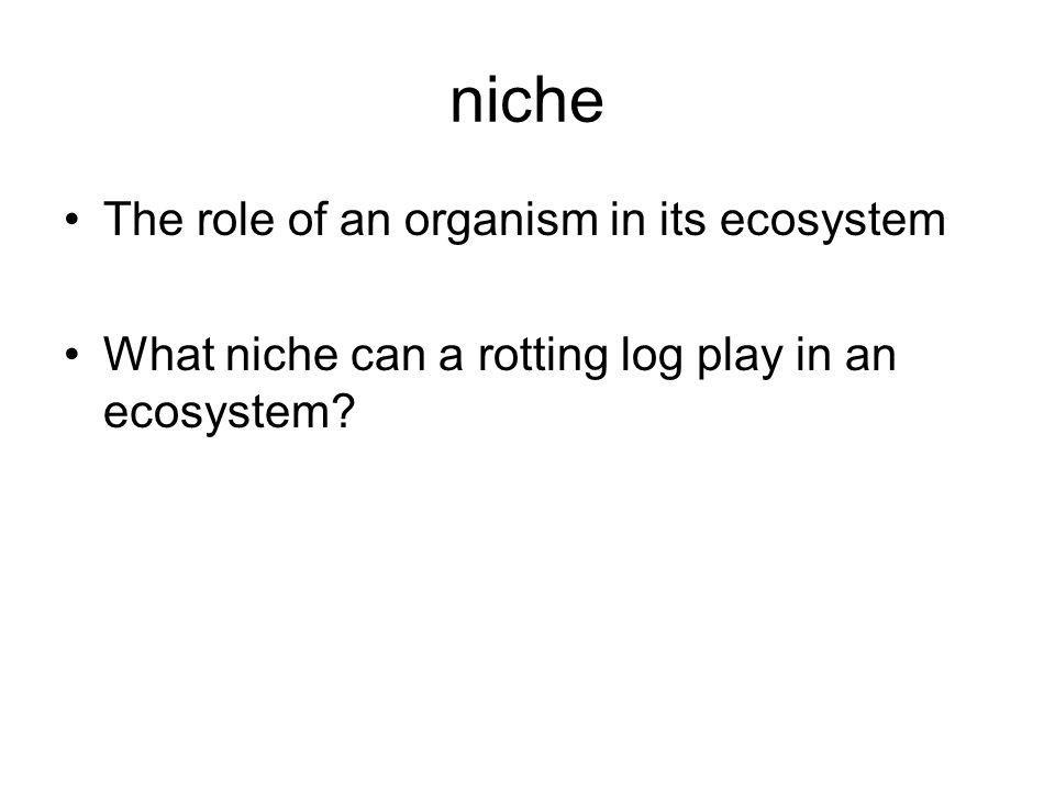 niche The role of an organism in its ecosystem