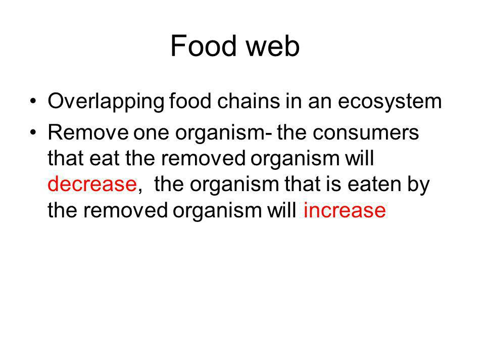 Food web Overlapping food chains in an ecosystem