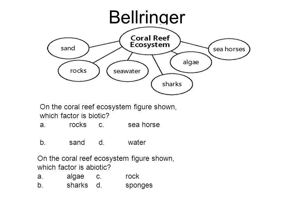 Bellringer On the coral reef ecosystem figure shown, which factor is biotic a. rocks c. sea horse.