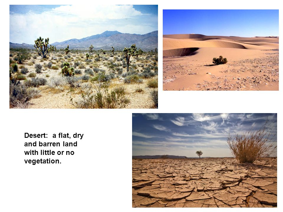 Desert: a flat, dry and barren land with little or no vegetation.