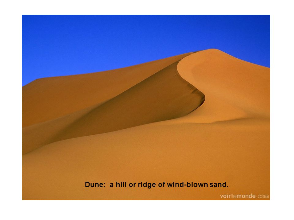 Dune: a hill or ridge of wind-blown sand.