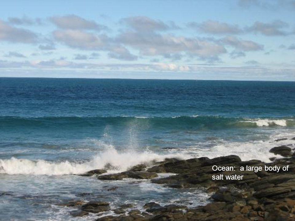 Ocean: a large body of salt water