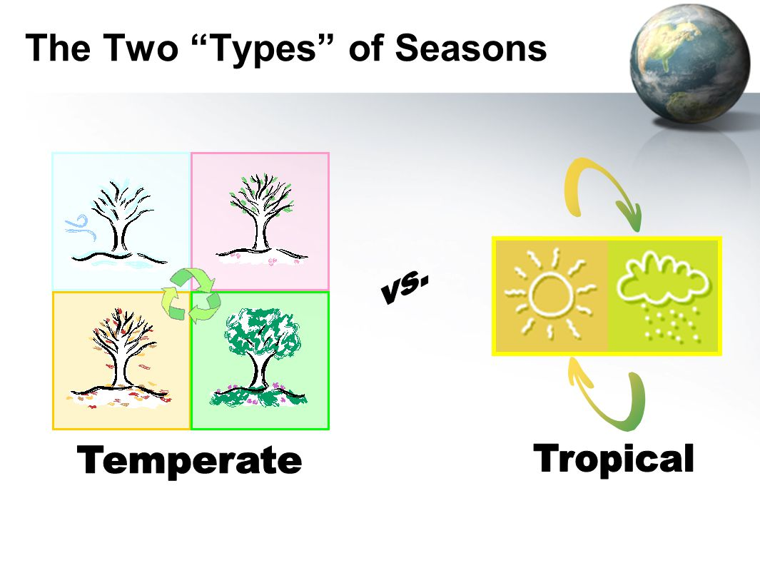 The Two Types of Seasons