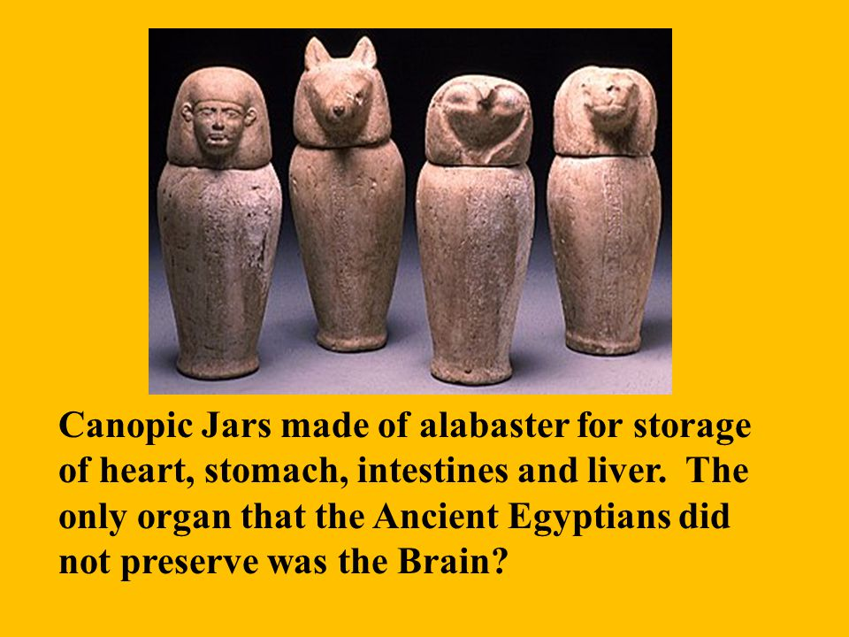 Canopic Jars made of alabaster for storage of heart, stomach, intestines and liver.