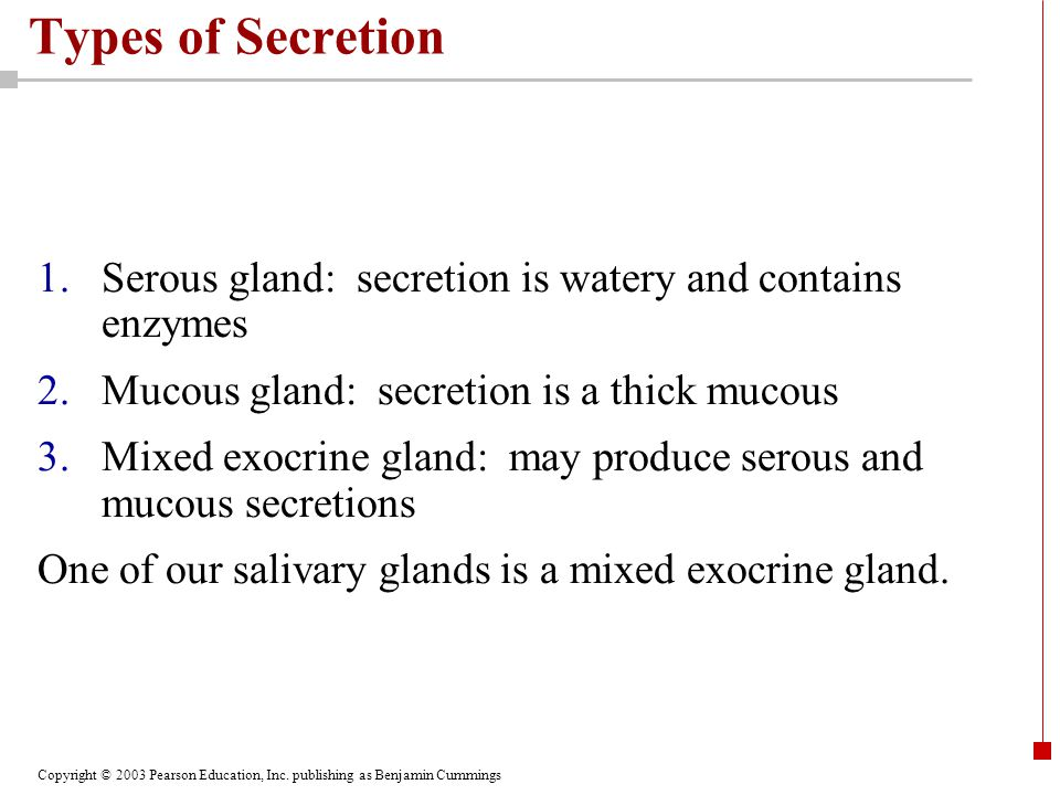 Types of Secretion Serous gland: secretion is watery and contains enzymes. Mucous gland: secretion is a thick mucous.