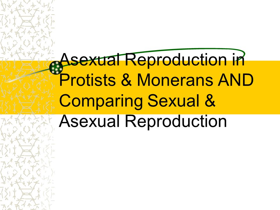 Asexual Reproduction in Protists & Monerans AND Comparing Sexual & Asexual Reproduction