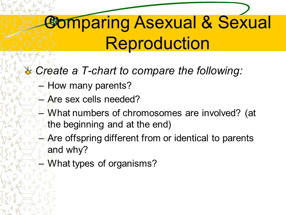 Comparing Asexual & Sexual Reproduction
