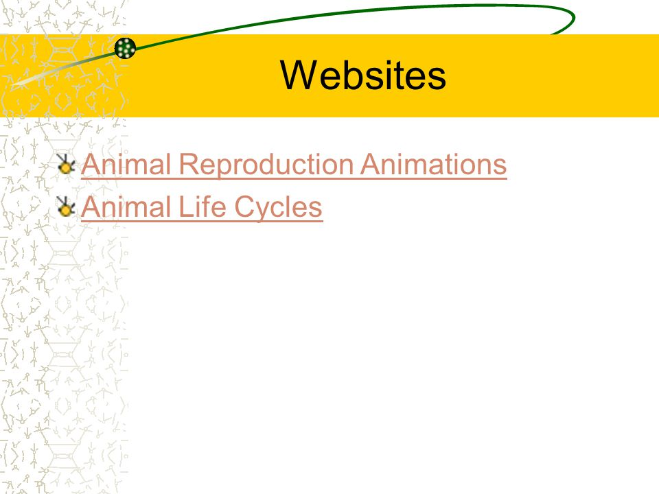 Websites Animal Reproduction Animations Animal Life Cycles