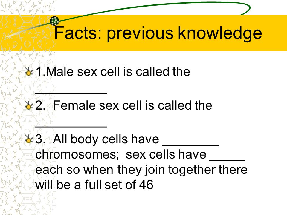 Facts: previous knowledge