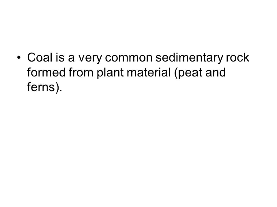 Coal is a very common sedimentary rock formed from plant material (peat and ferns).