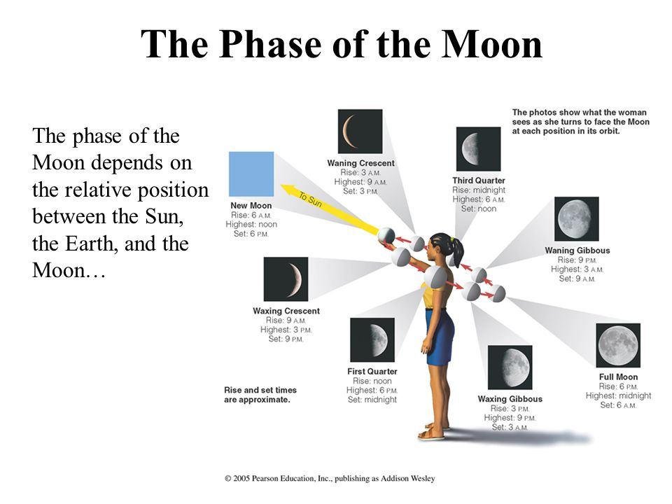The Phase of the Moon The phase of the Moon depends on the relative position between the Sun, the Earth, and the Moon…