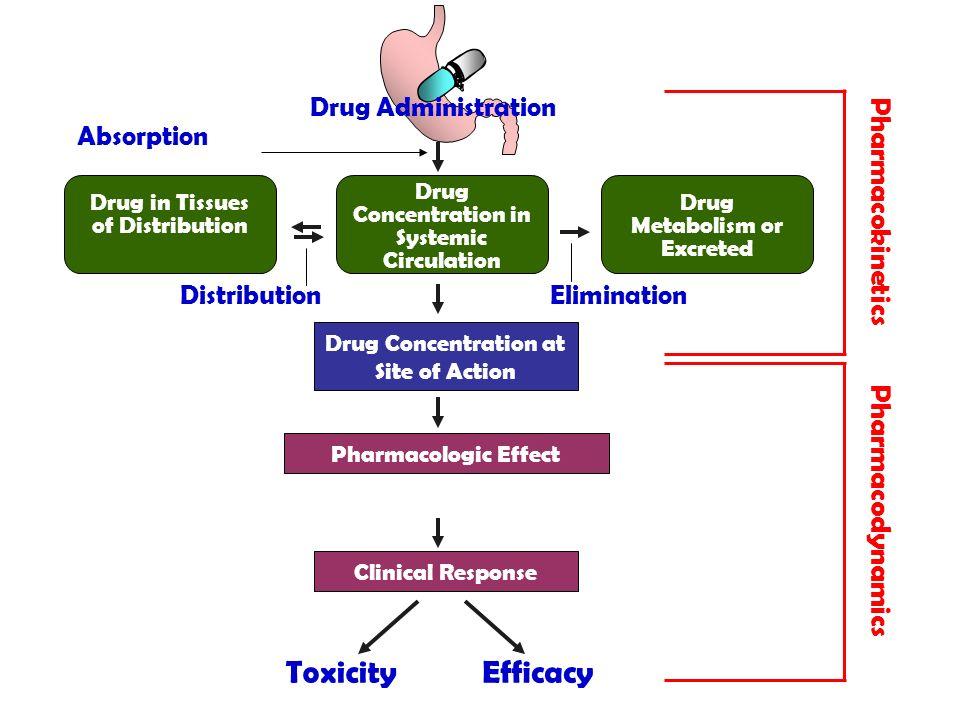 Toxicity Efficacy Pharmacokinetics Pharmacodynamics