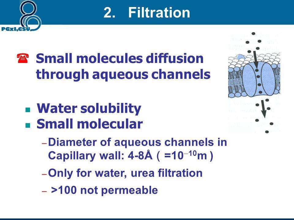 2. Filtration Small molecules diffusion through aqueous channels