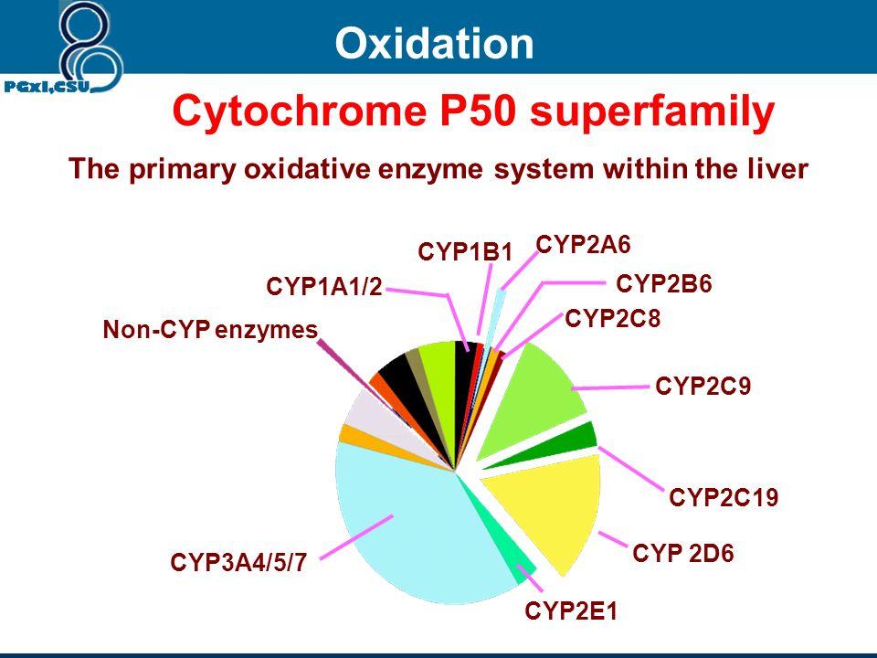 Cytochrome P50 superfamily