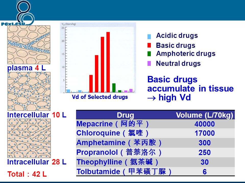 Basic drugs accumulate in tissue  high Vd