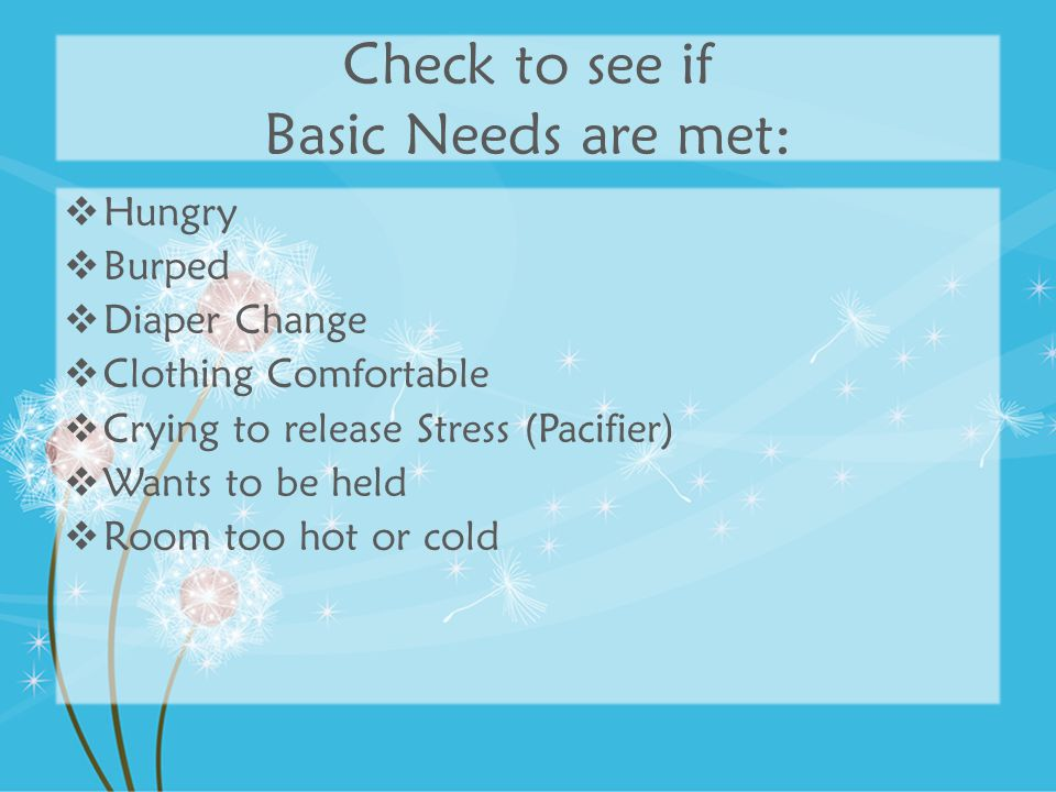Check to see if Basic Needs are met: